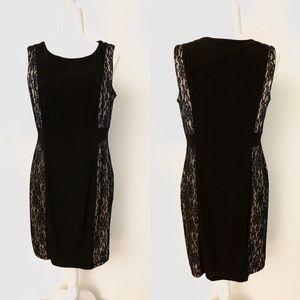 Enfocus Studio Lace Sheath Dress Black 14
